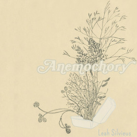 Anemochory